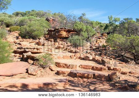 Layers of sandstone rock and native flora line a path through the Z-bend bushland under a clear blue sky in Kalbarri National Park in Western Australia.