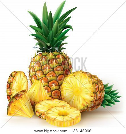 Pineapples cut fruit with slices. Vector illustration
