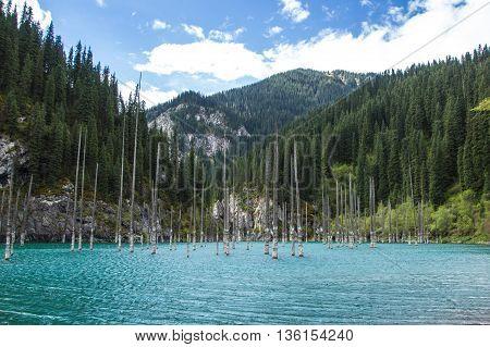 Kaindy Lake in Tien Shan mountain system, Kazakhstan