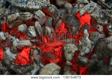 Charcoal Burning In Fire