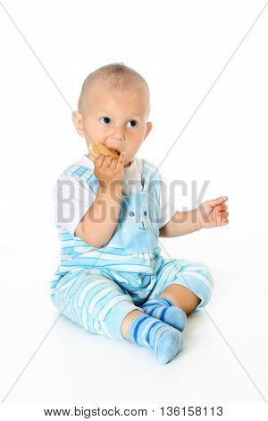 adorable cute children holds and eats cookies white background