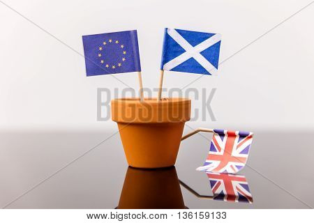 Plant Pot With Scottish And European Flag
