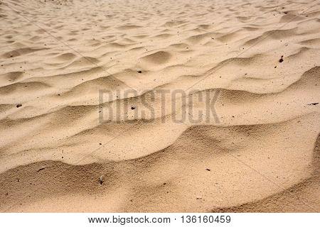 Sandy background at Sleeping Bear Dunes National Lakeshore, Michigan, USA