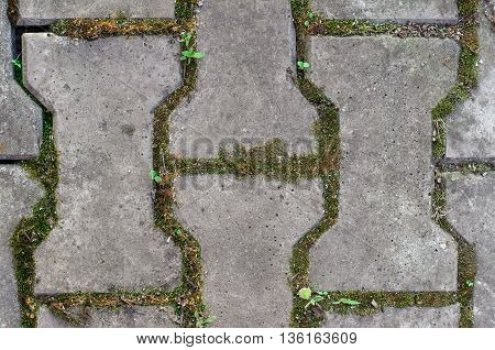 Texture Topic: Paving Tiles With Soil And Grass