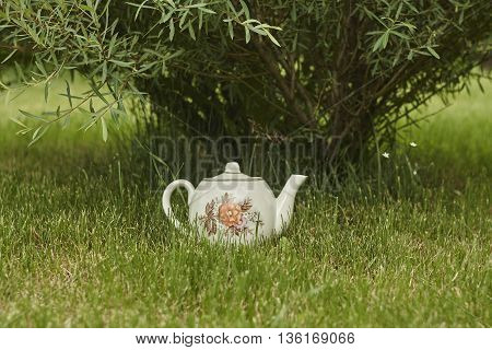 vintage tea pot on green lawn near bush