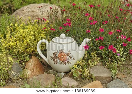 vintage tea pot on stone near red and yellow flower