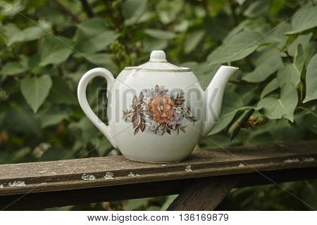vintage tea pot on old board near green bush