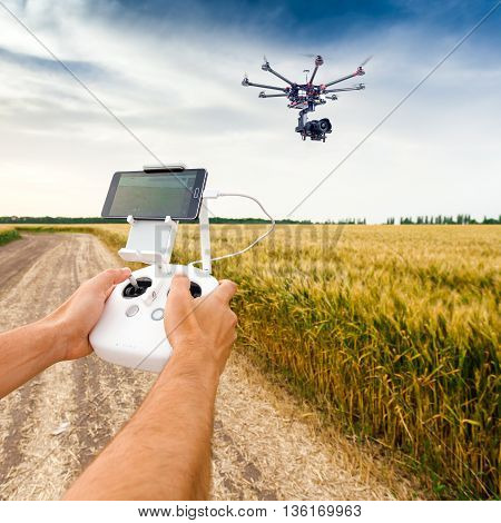 Demonstration of unmanned copter. Man controls drone flight. Flying the copter over a field of wheat. Remote control in a man's hands.