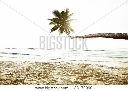 Beach Peaceful Vacations Summer Concept