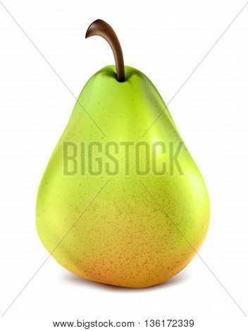 Isolated pear fruit, vector art illustration natural food.