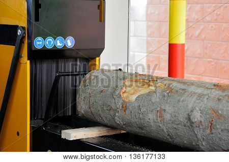 Band Saw Sawmill Cut Pine Log.
