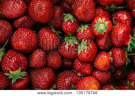 background from freshly harvested strawberries, directly above