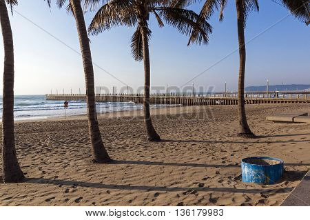 Palm Trees Against Empty Beach Sea And Concrete Pier