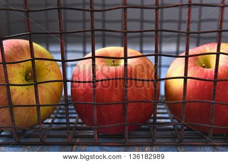 Closeup of three apples in a metal wire basket.