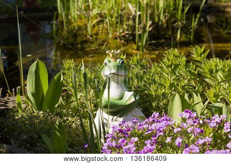 Frog prince with gold crown closeup and pond background.