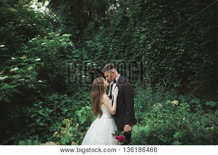 A view from green leaves on a kissing wedding couple.