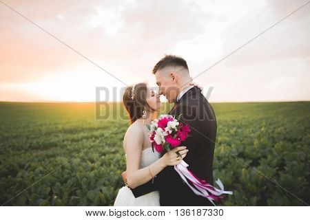 Beautiful wedding couple, love on the sunset. Fielf with flowers.