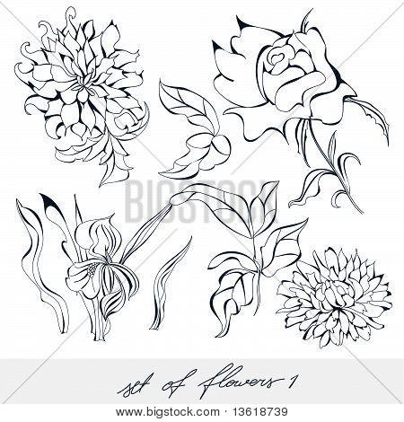 Set Of Flowers 1
