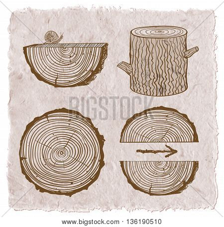 Skethces of wood cuts, logs, stump and wooden arrows on vintage background.