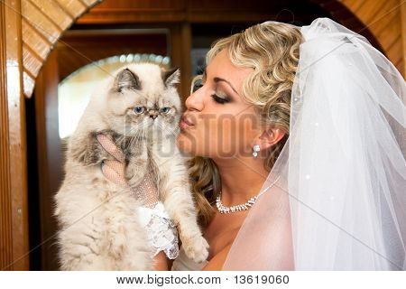 The Bride With A Cat