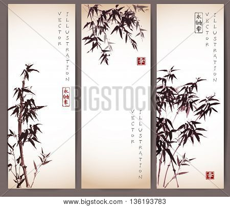 Three vintage banners with bamboo trees. Vector illustration. Traditional Japanese ink painting sumi-e. Contains hieroglyphs - eternity, freedom, happiness