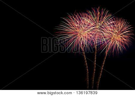 Bright Colorful Holiday Fireworks On The Black Sky Background