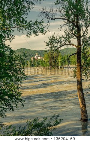 River landscape on a background of the Altay mountains