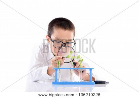 Young Asian Boy Check Plant Seedling In Laboratory