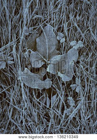Photo of frost on the grass with Duotone effect and canvas texture effect