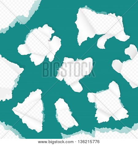 Vector realistic paper with ripped edges. Blue green torn paper set