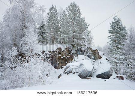 January cloudy day on the rocks of Karelia. Russia