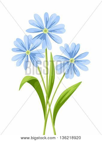 Vector bouquet of blue flowers isolated on a white background.