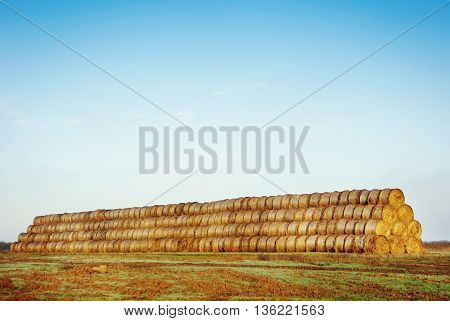 Haystack in the field. An autumn landscape in the country.
