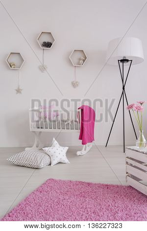 White And Pure Decor Of A Baby Girl's Room