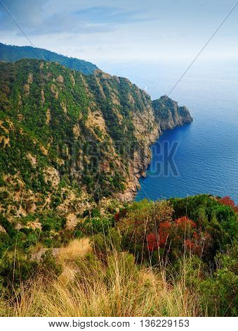 Landscape view Portofino Regional Nature Park in Italy