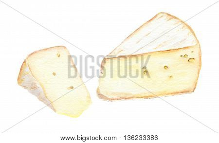 Two cheese brie slices. Water color isolated
