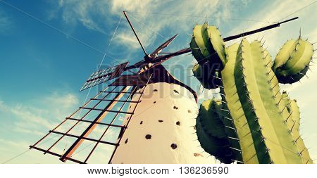 Windmill and cactus, Fuerteventura landscape. Toned image