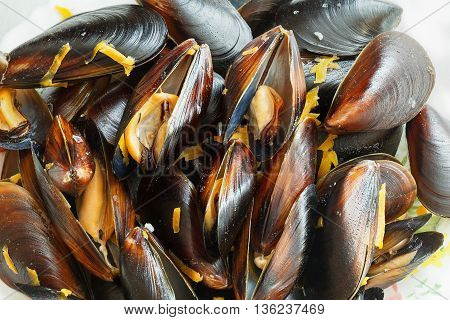 Steamed black sea mussels in cream sauce with carrot