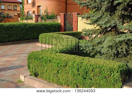 the area around the house, observation and care, shearing bushes, trees and lawn.