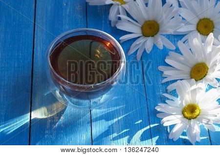 chamomile herbal tea in a cup of chamomile flowers among