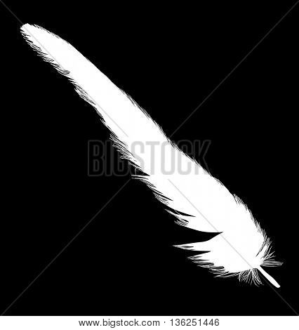 illustration with single white feather on black background