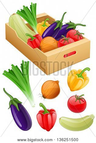 Organic vegetables set of fresh agriculture harvest fruits in cardboard box onion eggplant tomato peppers vector illustration