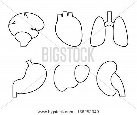 Set icons organs. Thin black line. Vector illustration