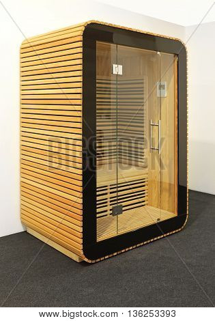 Small Sauna Cabin in Wooden Box With Glass Door