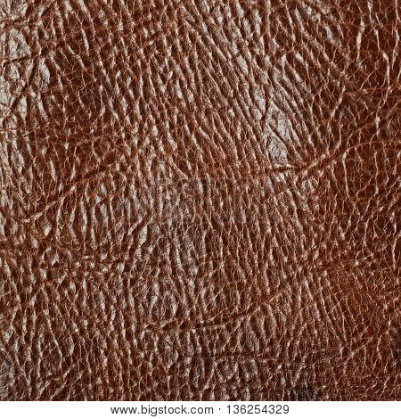 Brown leather texture as a backdrop composition