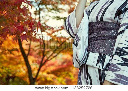 Japanese kimono woman and red leaves in autumn