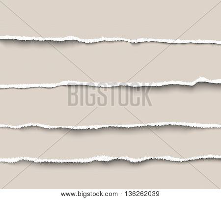 Set of torn paper dividers for websites and infographics. Realistic vector torn paper with ripped edges