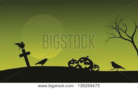 Silhouette of pumpkin and crow in tomb Halloween backgrounds