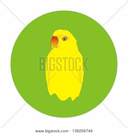 Illustration indian yellow parrot portrait in a green circle