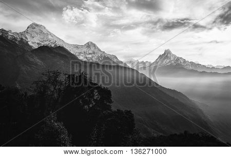 View of the himalayan peak the 6993 ms. mount Machhapuchhare-Fish Tail and Annapurna South Nepal. Black and White.